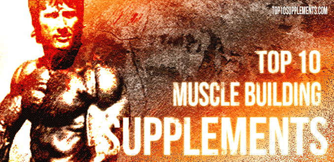 Best Muscle Building Supplements to Use – Get Bigger and Stronger